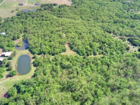 SECLUDED WOODED  ACREAGES AUCTION-STILLWATER OK AREA featured photo 11