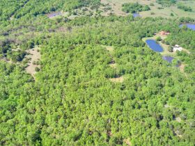 SECLUDED WOODED  ACREAGES AUCTION-STILLWATER OK AREA featured photo 12