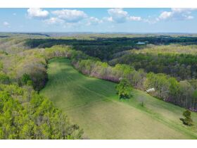 53.93 Acres m/l in Tracts ~ House & Personal Property - Absolute Live Auction featured photo 10