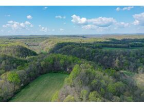 53.93 Acres m/l in Tracts ~ House & Personal Property - Absolute Live Auction featured photo 11