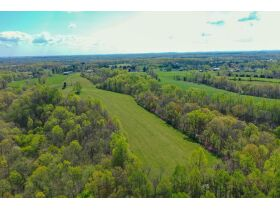 53.93 Acres m/l in Tracts ~ House & Personal Property - Absolute Live Auction featured photo 12