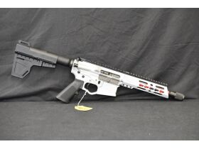 Worldwide Unique Military & Police Firearm Collection, Modern Guns & Ammo at Absolute Online Auction featured photo 6