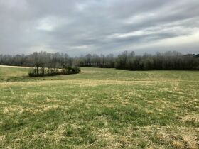 175 Acres offered in 2 tracts  with lake, 3 ponds, home place, county water available, 2 wells,  barns, outbuildings, fence. featured photo 4