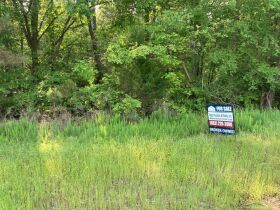 Thomas Cove Road, Grenada, MS 38901 - Lots For Sale featured photo 3