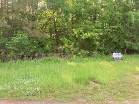 Thomas Cove Road, Grenada, MS 38901 - Lots For Sale featured photo 4