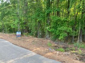 Thomas Cove Road, Grenada, MS 38901 - Lots For Sale featured photo 6