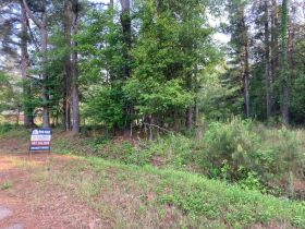 Thomas Cove Road, Grenada, MS 38901 - Lots For Sale featured photo 7