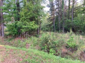 Thomas Cove Road, Grenada, MS 38901 - Lots For Sale featured photo 8
