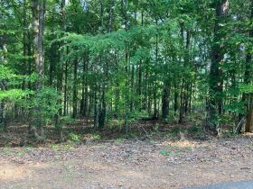 Thomas Cove Road, Grenada, MS 38901 - Lots For Sale featured photo 2