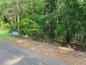 Thomas Cove Road, Grenada, MS 38901 - Lots For Sale featured photo 9