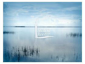 Real Estate Auction - Shallow Reed On The Bay Lots - Port St. Joe - Florida featured photo 9