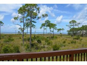 Real Estate Auction - Shallow Reed On The Bay Lots - Port St. Joe - Florida featured photo 4