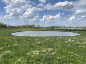 126 Acre Corydon Land Online Only Auction featured photo 1