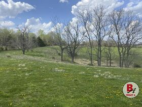 126 Acre Corydon Land Online Only Auction featured photo 5