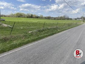 126 Acre Corydon Land Online Only Auction featured photo 6