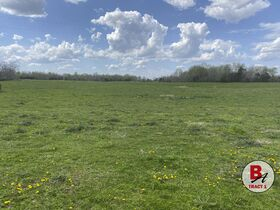 126 Acre Corydon Land Online Only Auction featured photo 7