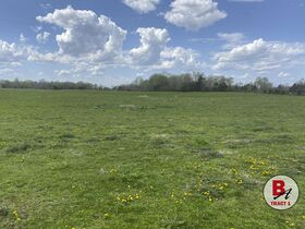 126 Acre Corydon Land Online Only Auction featured photo 8