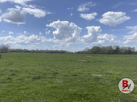 126 Acre Corydon Land Online Only Auction featured photo 9