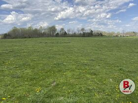 126 Acre Corydon Land Online Only Auction featured photo 10