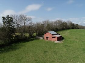 45+/- Acres Offered in Tracts - 4 BR, 3 BA One Level Home - Barns, Outbuildings, Pond, Creek - Auction July 17th featured photo 8