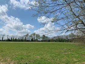 45+/- Acres Offered in Tracts - 4 BR, 3 BA One Level Home - Barns, Outbuildings, Pond, Creek - Auction July 17th featured photo 11