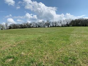 45+/- Acres Offered in Tracts - 4 BR, 3 BA One Level Home - Barns, Outbuildings, Pond, Creek - Auction July 17th featured photo 12