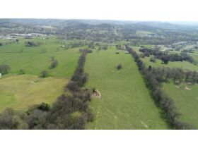 45+/- Acres Offered in Tracts - 4 BR, 3 BA One Level Home - Barns, Outbuildings, Pond, Creek - Auction July 17th featured photo 5