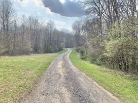 19 Acre Marion County Land featured photo 1