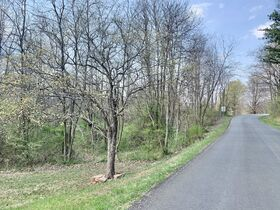19 Acre Marion County Land featured photo 2