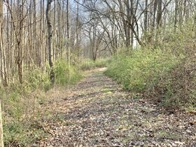 19 Acre Marion County Land featured photo 6