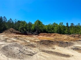 100 acres selling for United States Bankruptcy Court, East Side of US 49, Perkinston, Stone County, MS featured photo 2