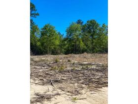 100 acres selling for United States Bankruptcy Court, East Side of US 49, Perkinston, Stone County, MS featured photo 8