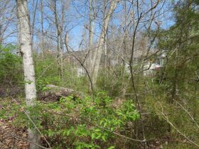 Vacant Residential Lot In Eastland Hills Subd., Sells To High Bidder, 4809 Maple Leaf Dr., Columbia, MO featured photo 4