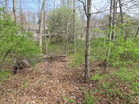 Vacant Residential Lot In Eastland Hills Subd., Sells To High Bidder, 4809 Maple Leaf Dr., Columbia, MO featured photo 5