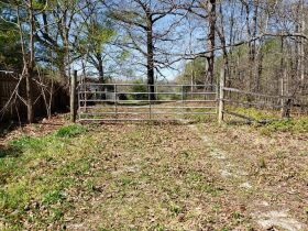 Approximately 60 Acres at Absolute Online Auction featured photo 10