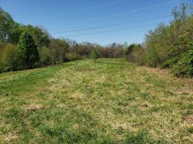 Approximately 60 Acres at Absolute Online Auction featured photo 1