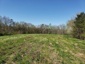 Approximately 60 Acres at Absolute Online Auction featured photo 6