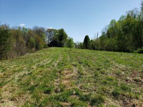 Approximately 60 Acres at Absolute Online Auction featured photo 7