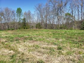 Approximately 60 Acres at Absolute Online Auction featured photo 9
