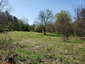 Approximately 60 Acres at Absolute Online Auction featured photo 8