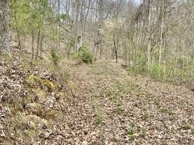 Ritchie County 2 Bedroom Home & 74 Acres featured photo 2
