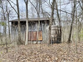Ritchie County 2 Bedroom Home & 74 Acres featured photo 8
