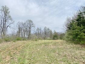 Ritchie County 2 Bedroom Home & 74 Acres featured photo 10