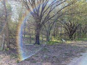 150x140 VACANT LOT, WOODED - CALDWELL KS featured photo 3