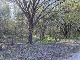 150x140 VACANT LOT, WOODED - CALDWELL KS featured photo 4