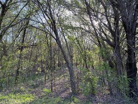 150x140 VACANT LOT, WOODED - CALDWELL KS featured photo 5