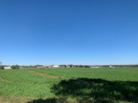 92+/- Acres Offered in Tracts - Commercial & Mixed Residential Zoning - Tracts Range from 5+/- Acres to 19+/- Acres - AUCTION May 20th featured photo 8