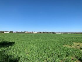 92+/- Acres Offered in Tracts - Commercial & Mixed Residential Zoning - Tracts Range from 5+/- Acres to 19+/- Acres - AUCTION May 20th featured photo 6