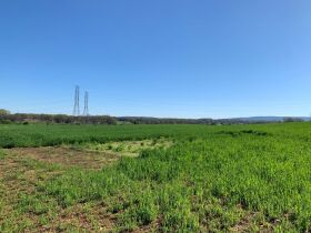 92+/- Acres Offered in Tracts - Commercial & Mixed Residential Zoning - Tracts Range from 5+/- Acres to 19+/- Acres - AUCTION May 20th featured photo 4