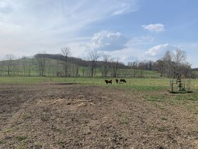 9 Acres Of Productive Coshocton County Land featured photo 8